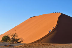 SOSSUSVLEI, NAMIBIA, DUNE 45. SOSSUSVLEI, NAMIBIA - JAN 29, 2016: Tourists climb Dune No.45 most popular dune in the whole World, Namibia, Africa Stock Photo