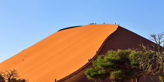 SOSSUSVLEI, NAMIBIA, DUNE 45. SOSSUSVLEI, NAMIBIA - JAN 29, 2016: Tourists climb Dune No.45 at sunrise, most popular dune in the whole World, Namibia, Africa stock images