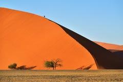 SOSSUSVLEI, NAMIBIA, DUNE 45. Dune No.45 at sunrise. Most popular dune in the whole World, Namibia, Africa Royalty Free Stock Photos