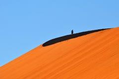 SOSSUSVLEI, NAMIBIA, DUNE 45. Dune No.45 at sunrise. Most popular dune in the whole World. Namibia, Africa Stock Photo