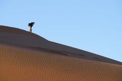 Tourist photographer in distance on ridge on dunes of Hidden Vl. SOSSUSVLEI, NAMIBIA - MAY 18 2018; Tourist photographer in distance on ridge on dunes of Hidden royalty free stock photography