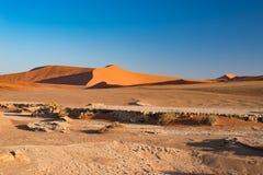 Sossusvlei Namibia, podróży miejsce przeznaczenia w Afryka Piasek diuny i gliny solankowa niecka z akacjowymi drzewami, Namib Nau Zdjęcia Stock