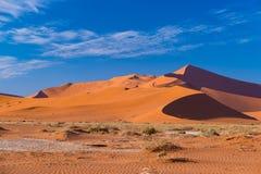 Sossusvlei Namibia, podróży miejsce przeznaczenia w Afryka Piasek diuny i gliny solankowa niecka z akacjowymi drzewami, Namib Nau Obraz Royalty Free