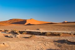 Sossusvlei Namibia, travel destination in Africa. Sand Dunes and clay salt pan with acacia trees, Namib Naukluft National Park, Na Stock Photos