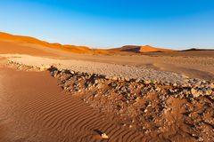 Sossusvlei Namibia, travel destination in Africa. Sand Dunes and clay salt pan with acacia trees, Namib Naukluft National Park, Na. Mib desert Stock Photography