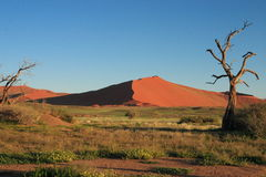 Sossusvlei no deserto de Namib Fotografia de Stock