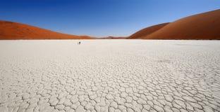 Sossusvlei panna i Namibia Royaltyfria Foton