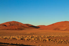 Sossusvlei. Panorama trought red dunes from Sesriem to Sossusvlei, Namibia Royalty Free Stock Photography