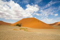 Sossusvlei park, Namibia. The red sand dune 45  of Sossusvlei park, Namibia Stock Images