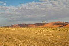 Sossusvlei park, Namibia Royalty Free Stock Image