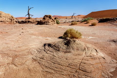 Sossusvlei piękny krajobraz śmiertelna dolina Zdjęcie Royalty Free