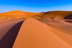 Sossusvlei piaska diuny, Namib Naukluft park narodowy, Namib pustynia, sceniczny podróży miejsce przeznaczenia w Namibia, Afryka Zdjęcie Royalty Free