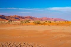 Sossusvlei piaska diuny, Namib Naukluft park narodowy, Namib pustynia, sceniczny podróży miejsce przeznaczenia w Namibia, Afryka Obraz Royalty Free