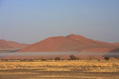 Sossusvlei sand dune national park. Sossusvlei n a very rare misty day where the red iron oxide dunes are static Stock Images