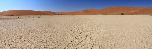 Sossusvlei sand dunes landscape, Nanib desert. Sossusvlei sand dunes landscape in the Nanib desert near Sesriem, Namibia Royalty Free Stock Photo