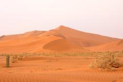 Sossusvlei: sand dunes. In the Namib Desert, Namibia Stock Photo