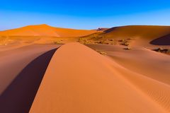 Sossusvlei Sand Dunes, Namib Naukluft National Park, Namib desert, scenic travel destination in Namibia, Africa. Royalty Free Stock Photo