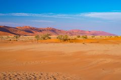 Sossusvlei Sand Dunes, Namib Naukluft National Park, Namib desert, scenic travel destination in Namibia, Africa. Sossusvlei Sand Dunes, Namib Naukluft National Royalty Free Stock Image