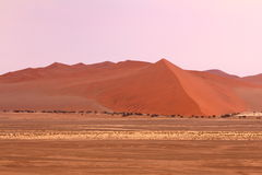 Sossusvlei: Sanddyn Fotografering för Bildbyråer
