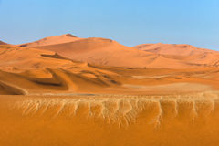 Sossusvlei sands. Sand texture and dunes on the horizon Stock Photography