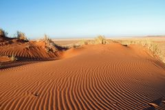 Incredible sand dunes near Sossusvlei and Deadvlei in de Namib Desert. Sossusvlei sometimes written Sossus Vlei is a salt and clay pan[1] surrounded by high red royalty free stock photos
