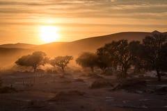 Sossusvlei-Sonnenaufgang stockbilder