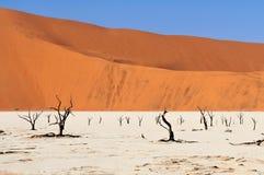 Sossusvlei teren w Namibia Obraz Stock