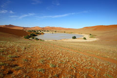 Sossusvlei Royalty Free Stock Photography