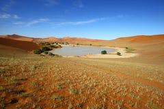 Sossusvlei. Water in Sossusvlei, Namib Naukluft NP,  Namibia Royalty Free Stock Photography