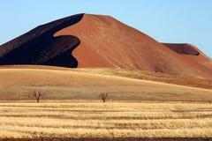 Sossusvlei - Woestijn namib-Naukluft - Namibië royalty-vrije stock foto's