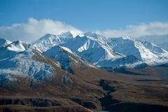 Sosta Alaska di Denali Fotografie Stock Libere da Diritti