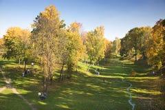 Sosta d'autunno, burrone, ruscello Fotografie Stock