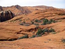 Sosta del canyon della neve Fotografia Stock