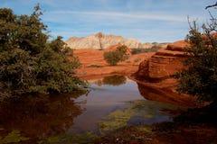 Sosta del canyon della neve, paesaggio dell'Utah Fotografia Stock