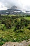 Sosta del ghiacciaio del Montana Immagine Stock Libera da Diritti