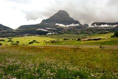 Sosta del ghiacciaio del Montana Fotografie Stock