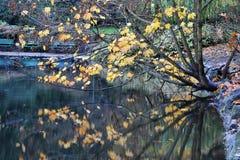 Sosta della collina di falò di autunno Immagine Stock Libera da Diritti