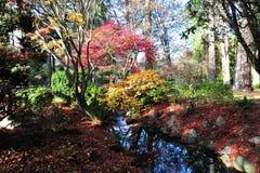 Sosta della collina di falò di autunno Immagini Stock Libere da Diritti