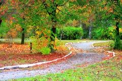 Sosta della foresta di autunno Fotografie Stock