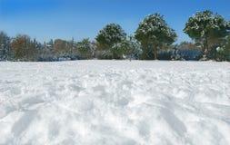 Sosta della neve Fotografia Stock Libera da Diritti