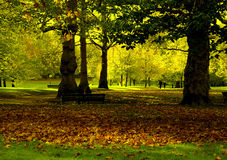 Sosta di autunno Immagini Stock