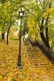 Sosta di autunno Immagine Stock Libera da Diritti