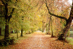 Sosta di autunno nel paese della Polonia Fotografie Stock Libere da Diritti