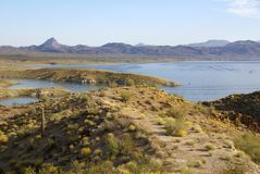 Sosta di condizione del lago Alamo in Arizona Fotografia Stock