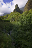 Sosta di condizione della valle di Iao, Maui, isole hawaiane Immagini Stock