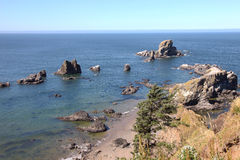 Sosta di condizione di Ecola, litorale dell'Oregon & Oceano Pacifico. Immagini Stock Libere da Diritti