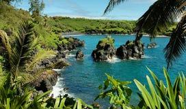 Sosta di condizione di Waianapanapa, Maui Immagine Stock Libera da Diritti