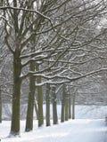 Sosta di inverno immagine stock
