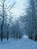 Sosta di inverno immagine stock libera da diritti