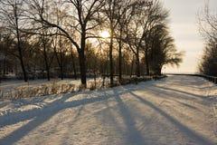 Sosta di inverno Immagini Stock